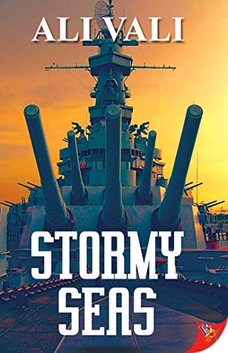 Stormy Seas (English Edition)