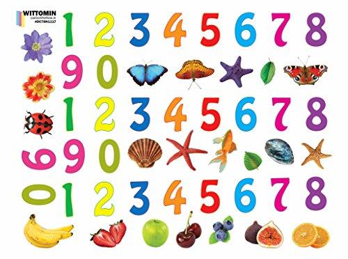 51 x Vinyl Aufkleber Zahlen - Ohne weiße Ränder - Wasserfest - Ausgeschnitten - mit Obst Muscheln Seesterne Blumen Schmetterlinge Fische für Kinder Bunt B35cm x H26cm