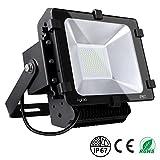 Faro Farettoda LED Esterno Aglaia Proiettore 10W Impermeabile IP66 e Bianco Freddo, Lampada LED 700...