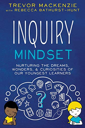 Inquiry Mindset