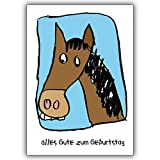 16 Geburtstagskarten (16er Set): Lustige Geburtstagskarte für Mädchen/ Reiterinnen mit Pferd