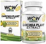 Pure Garcinia Cambogia - Best Reviews Guide