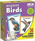 Creative Educational 1.160,8cm Entdecken Sie Vögel Flash Card Game