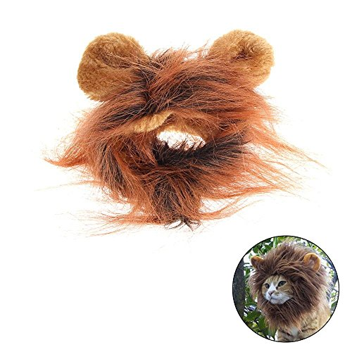 Scratch Kostüm Katze - Kostüm Katze Löwe-Perücke Perücke mit scratch-Braun 04