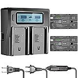 Neewer Batterie de Remplacement et Chargeur pour Sony F550, 2600mah Batterie Li-ion pour Lampe de Vidéo Moniteur de Caméra et Caméscope, Dual-canaux LCD Chargeur de Batterie avec US/EU Prise et Adaptateur de Chargeur de Voiture USB Port