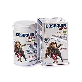 Candioli Cosequin Ultra Ha 80cpr – 160 gr