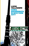 Guida disordinata di New York city