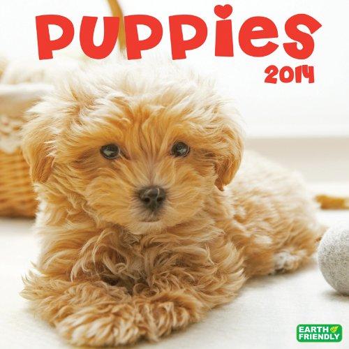 2014 Puppies Wall
