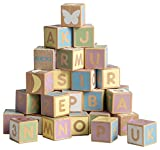 Micki 10–2163–00 Alphabet Blocks Set