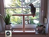 Papageienspielzeug, Papagei Spielzeug, Vogelspielzeug, Freisitz für Fensterbank, Tischfreisitz, Klickertraining
