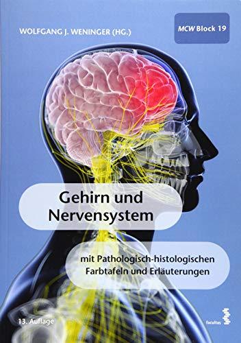 Gehirn und Nervensystem -