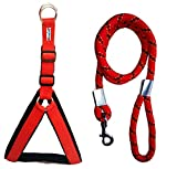#6: Petshop7 Nylon Padded Red adjustable Dog Harness & Dog Leash Rope 1.25 Inch for Large Pet (Chest Size : 33-42)