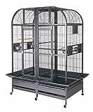 Grande Volière Cage pour oiseaux Gris du Gabon, Aras, Cacatoes ' KINGSTON '