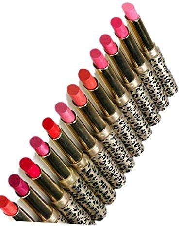 SKY nuevo !!!Lápiz labial hidratante del leopardo del maquillaje de la mancha del labio de los lápices labiales 12pcs / lot (Multicolor)