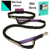 PupRepublic Hands Free Dog Lead for Running Walking Hiking.Adjustable Waist Belt,Reflective Bungee Lead