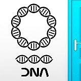 Adhesivos de Pared de ADN Genealogía Biología Escuela de Química Adorno de Pared Ciencia Vinilo Tatuajes de Pared Etiqueta de la Decoración Del Hogar Sala de estar 56x90cm