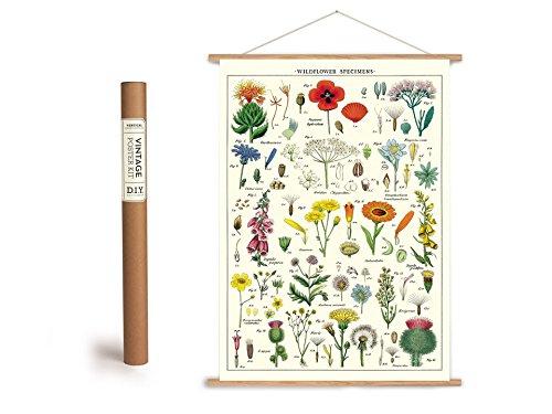 Vintage Poster Set mit Holzleisten (Rahmen) und Schnur zum Aufhängen, Motiv Wildblumen, Blumenwiese