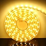 AveyLum LED Streifen Warmweiß 5M/16.4ft LED Lichtband Lichtleiste 2835 SMD Wasserdicht LED Leisten mit EU Stecker für zu Hause Küche Festival Weihnachten Beleuchtung Dekoration(220V)