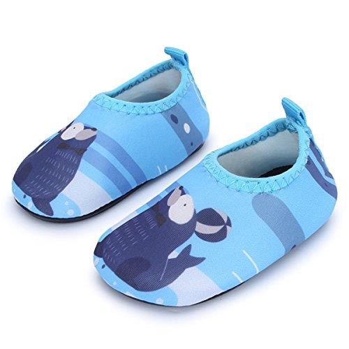 JIASUQI Baby Mädchen und Jungen Aqua Wasser Wander Schuhe Strand Sandalen für Draussen Schwimmen Camping, Blaues Siegel 0-6 Monate (Herstellergröße : 15/16)