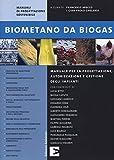 Biometano da biogas. Manuale per la progettazione, autorizzazione e gestione degli impianti