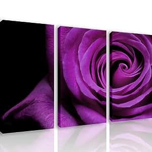 S26 viola rosa 3 quadri moderni 120x80 cm stampa digitale su tela ideale per arredo - Stampe per bagno ...