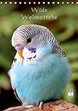Wilde Wellensittiche (Tischkalender 2019 DIN A5 hoch): Wunderschöner Wellensittichkalender mit atemberaubend schönen und farbenprächtigen Fotografien ... (Monatskalender, 14 Seiten ) (CALVENDO Tiere)
