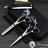 Best Salon Supply Store Hair Cutting Shears - SHARPY Professional Pet Grooming Scissors 6.5 Inch Stainless Review