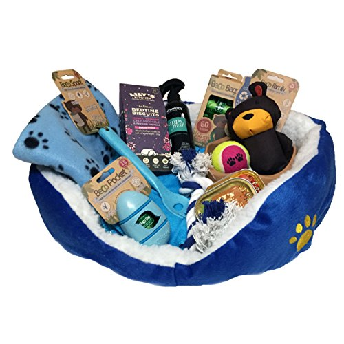 Puppy Hamper Blue - Ideal gift for small dogs birthday or Christmas