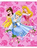 Disney Princess Jewels and Flowers 50-In...