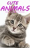 #7: CUTE BABY ANIMALS FOR CHILDREN: SUPER ADORBS PICTURE BOOK FOR KIDS (BEDTIME STORY PICTURE BOOKS 5)