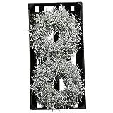 Wundervoller Asparagus Kranz Gewachst - Natur Türkranz Weihnachten - Deko Wandkranz/Weihnachtskranz / Gewachster Tischkranz - Weihnachten/Weihnachtsdeko (Weiß, Ø 25cm (2 Stück))