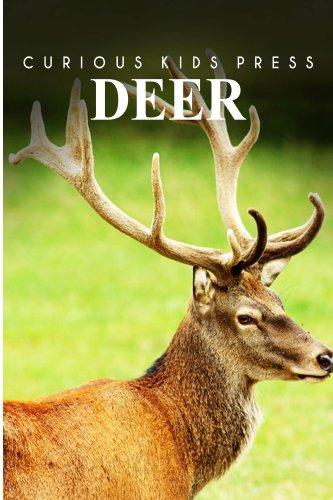 Deer  - Curious Kids Press
