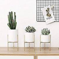 Maceta redonda de cerámica con soporte de hierro, ideal para plantas suculentas de cactus,