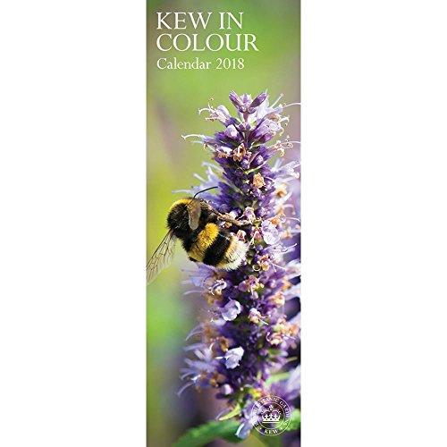 Royal Botanic Gardens Kew 2018 S (Slim Standard)