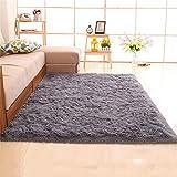 Jack Mall- Langhaar verdickte Wasser seidig minimalistisch Moderne Wohnzimmer Couchtisch Schlafzimmer Bettvorleger Erker (Farbe : Silber, größe : 2.0x3 M)