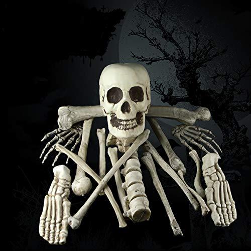 ShiyiUP 17pcs Schädel Knochen Menschliches Skelett Anatomisches Modell Halloween Karneval Fasching Dekoration Party