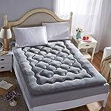 FF Tapis de Sol Tatami Tapis de Sol - Tapis Souple et Enroulable, Roll Up Up Mat Tapis de futon Traditionnel, Matelas de dortoir pour étudiants (Taille: 90 × 195cm)