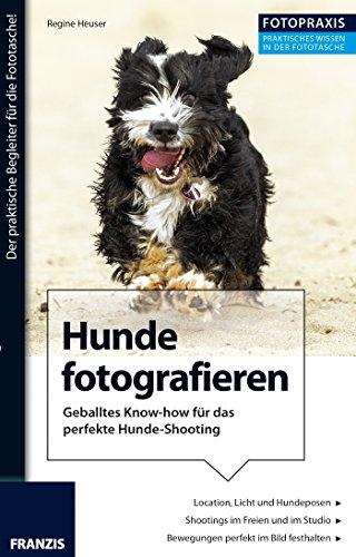 Foto Praxis Hunde fotografieren: Geballtes Know-how für das perfekte Hunde-Shooting