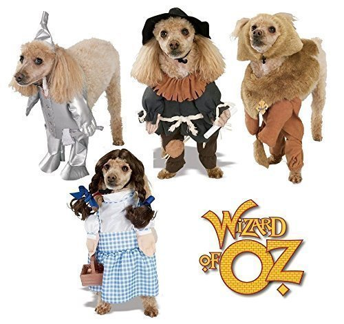 Oz Von Zauberer Vogelscheuche Kostüm (Jungen Mädchen Haustier Hund Katze Animal Zauberer von Oz Dorothy Dosenmann Vogelscheuche Halloween Kostüm Kleid Outfit S-XL - Löwe,)