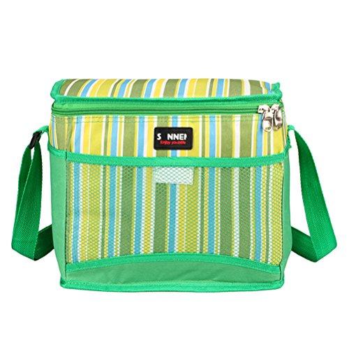 Zhhlaixing 10l scialle isolato borsa da scatola da pranzo stripe pacco da asporto borsa da picnic borsa di scatola da stoccaggio adatto per picnic camping barbecue viaggi shopping