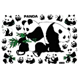 Panda Animaux Ours Racing Tuning Autocollant Dimensions 27 x 18 cm