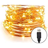 ZJT USB Powered Copper Wire String Lights for Home Festival Decoration(Warm White, 10 Meter with 100 LEDs)