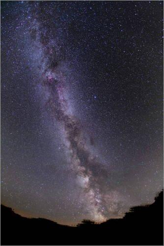Leinwandbild 40 x 60 cm: Milchstraße im Sommer von Alan Dyer/Stocktrek Images - fertiges Wandbild, Bild auf Keilrahmen, Fertigbild auf echter Leinwand, Leinwanddruck