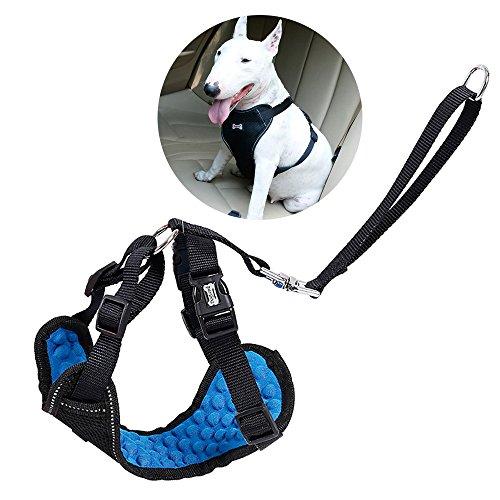 Hund Auto Sicherheitsgurt, Hundegeschirr, Haustier Harness mit Massagefunktion, Hund, Katze und Haustier Durable Auto Travel Collar Set,L