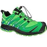 Salomon XA Pro 3D GTX, Chaussures de Trail Femmes - - Hellgrün/Grün, 38 2/3 EU
