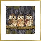 Civette Stampa d'Arte e Cornice (Plastica) - Three Tawny Owls, Julia Burns (40 x 40cm)