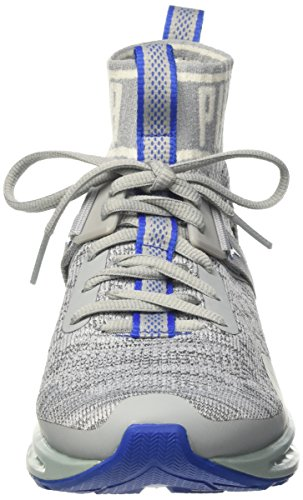 Puma Ignite Evoknit, Chaussures de Running Compétition Mixte Adulte Gris (Quarry-asphalt-lapis Blue)