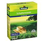 Dehner Saatgut, Schattenrasen, 2.5 kg, für ca. 100 qm
