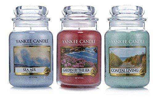 Oficial Yankee Candle Set de 3Tranquilo días Classic firma grandes tarros–brisa del mar, la vida costera, jardín por el mar