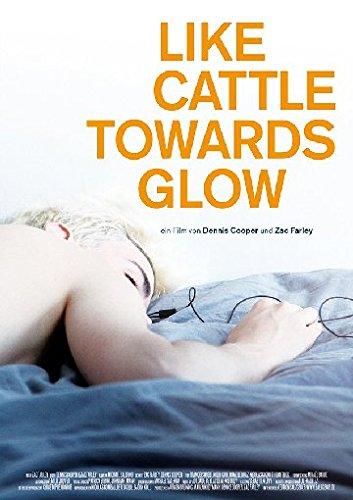 Preisvergleich Produktbild Like Cattle Towards Glow (OmU)